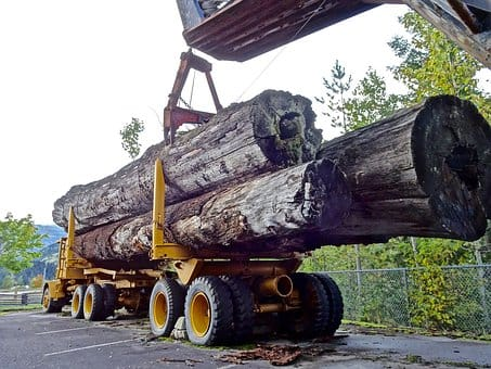 Logging Accident Injury Lawyers – West Virginia
