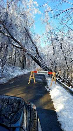 Beautiful on the Trees, Treacherous on the Roads: Be Ready!